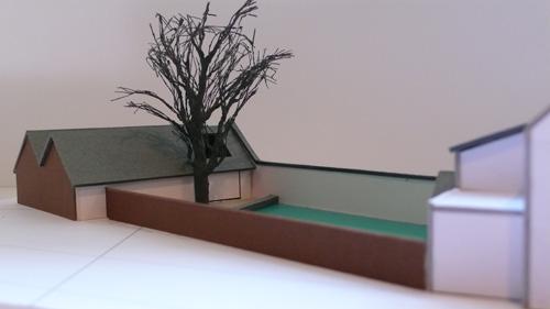 Garden Wal and Ash Tree